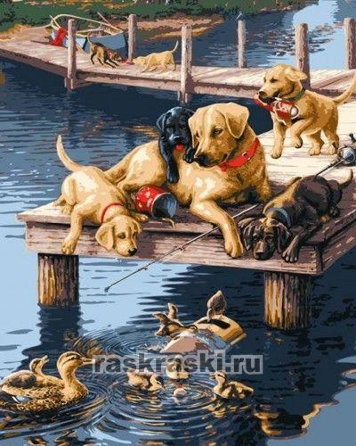 Раскраска по номерам plaid утки и собаки