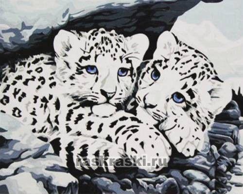 Раскраска по номерам белые тигрята