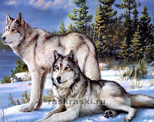 Набор алмазной вышивки волки