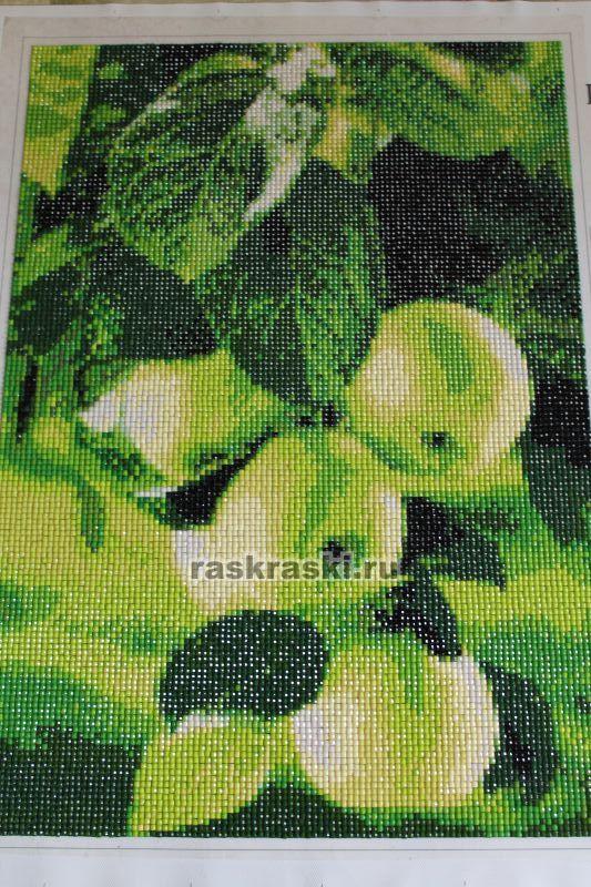 Алмазная вышивка зеленые яблоки 87
