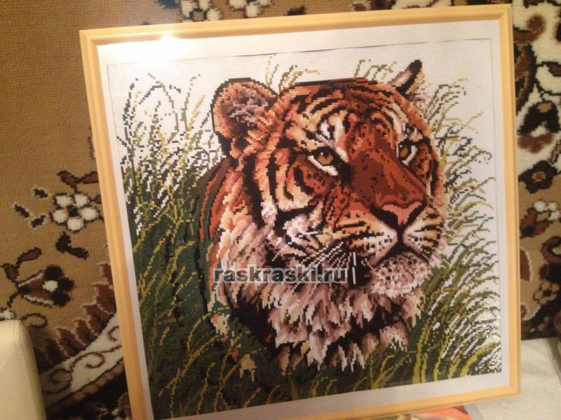 Алмазная вышивка тигры полная выкладка 1