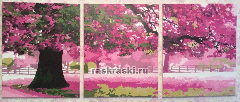 Раскраски по номерам сакура триптих