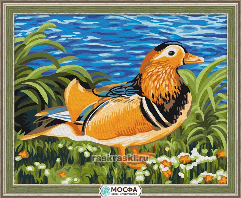 «Утка-мандаринка» Мосфа 7C-0072 — купить картину по ...