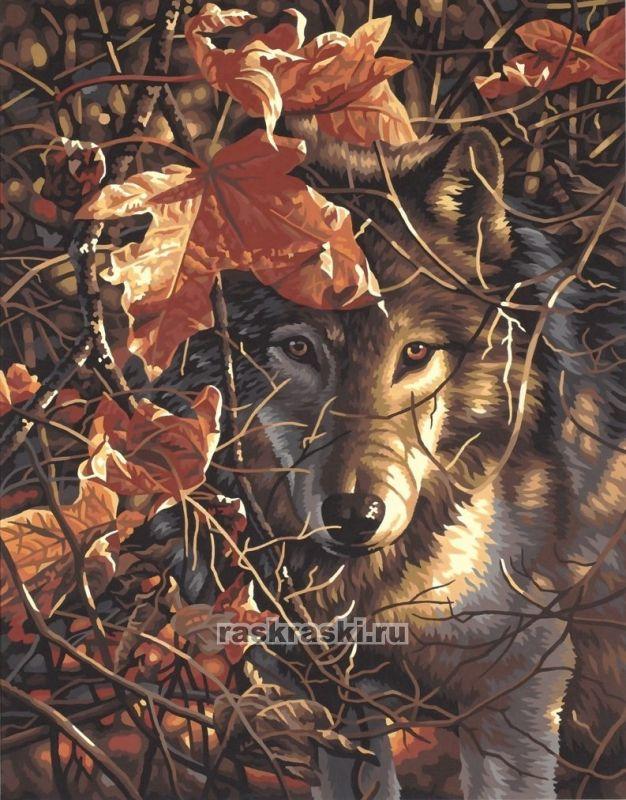 «Волк в осеннем лесу» Dimensions 91362 — купить картину по ...