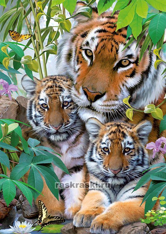 Купить пазл Ravensburger 1000 «Семья тигров» в интернет ...
