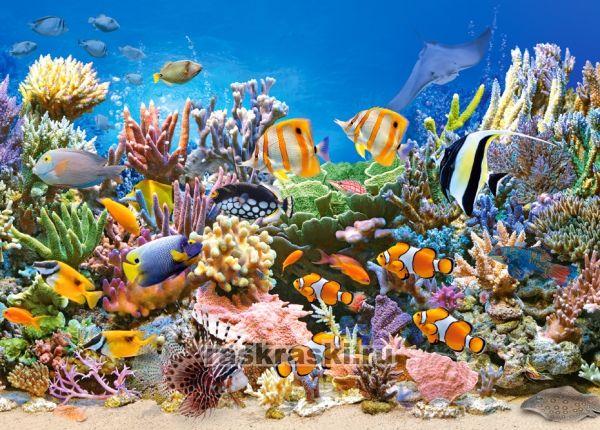 Купить пазл Castorland 260 «Цвета океана» в интернет ...
