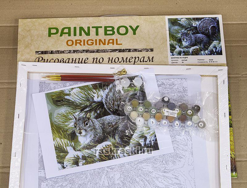 «Белочка на кедре» Paintboy Original GX7549 — купить ...