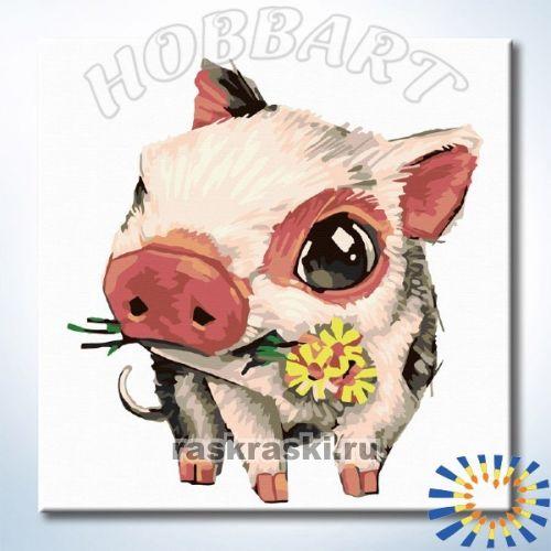 Раскраска по номерам Hobbart Lite «Piggy. Мини пиги»