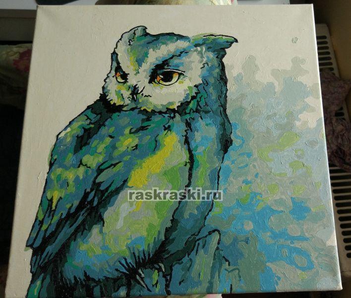 «Изумрудная сова» Color-KIT CD019 — купить картину по ...