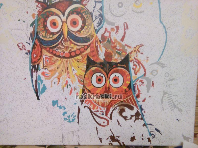 совы Paintboy Original Gx8849 купить картину по номерам в
