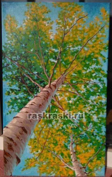 Раскраска по номерам Hobbart Lite «В тени берёз»