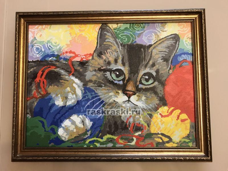 «Котик с клубочками» Белоснежка 786-AS — купить картину по ...