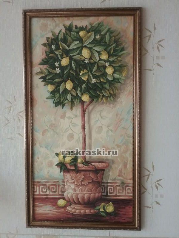 лимонное дерево Schipper 9220397 купить картину по